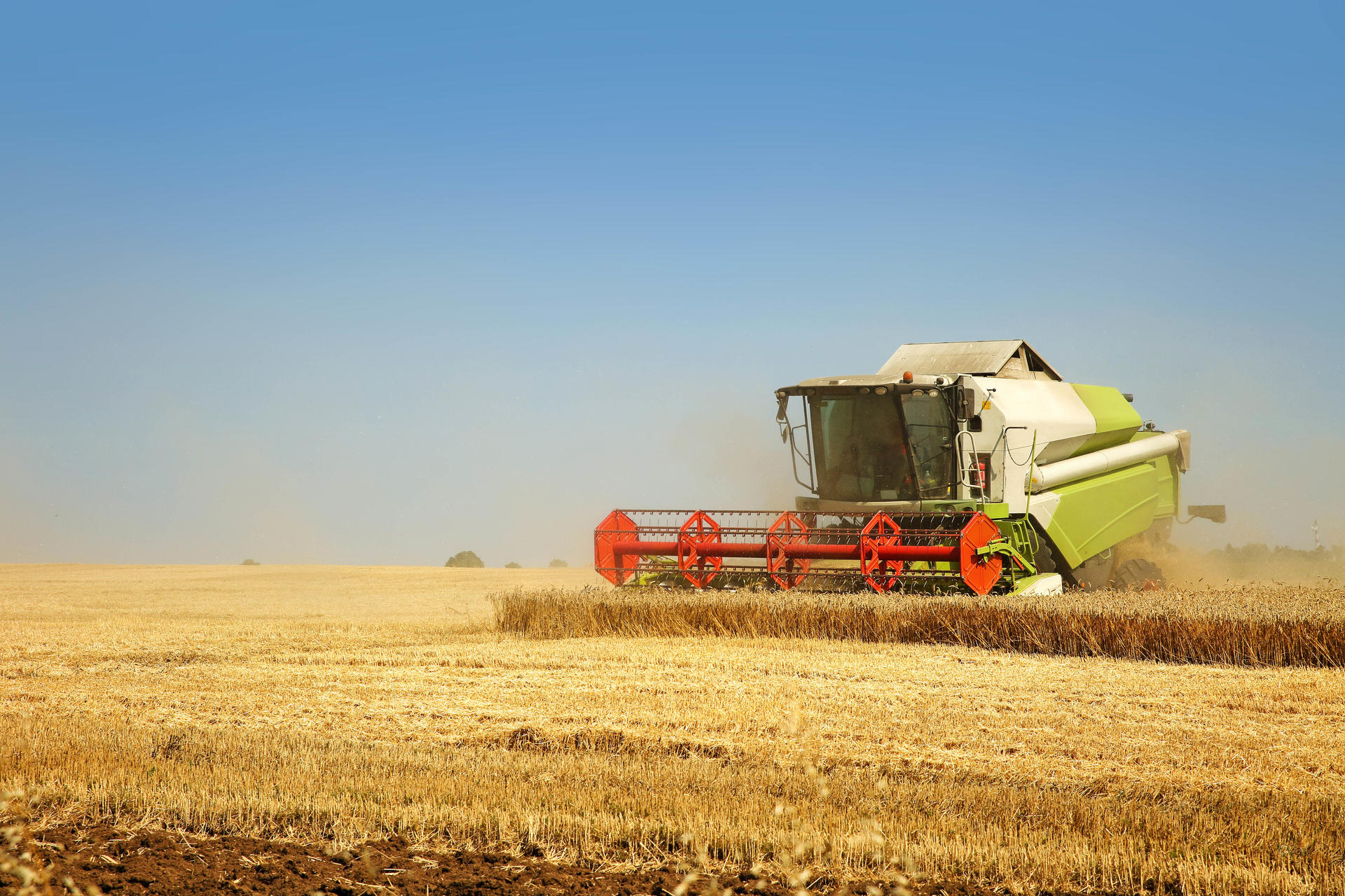 Claas combine harvester in the wheat field